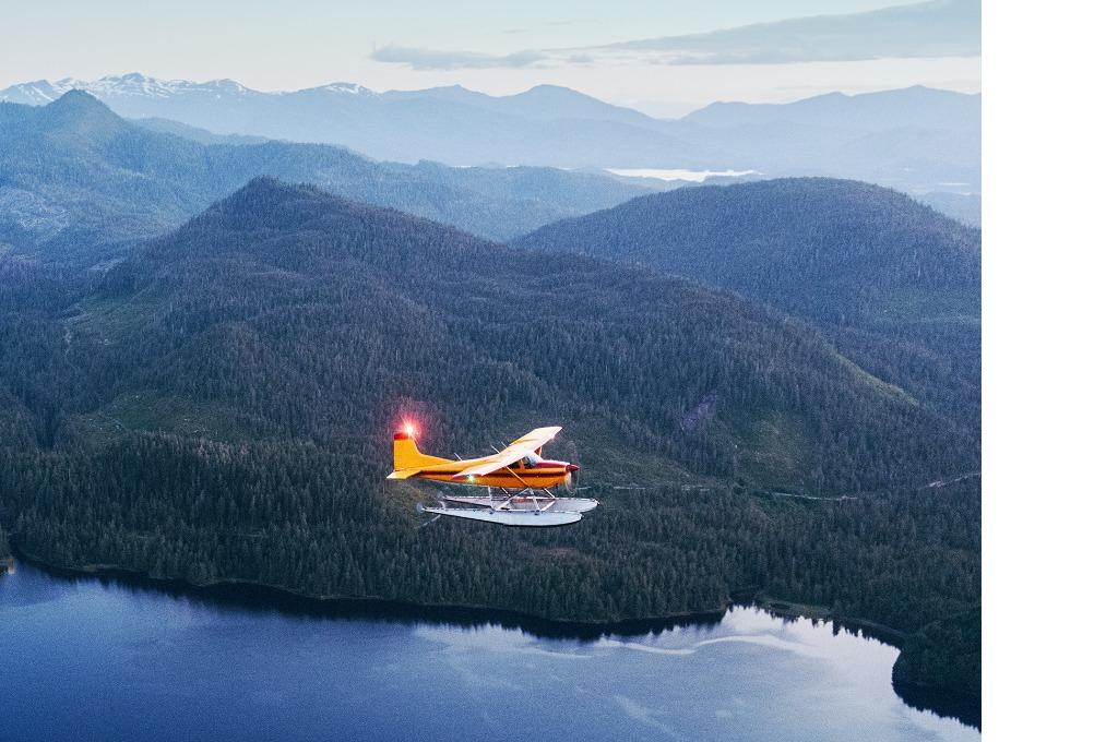 twilight-flight-picture-id170955133